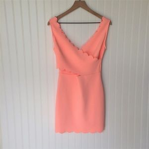 NWT Tea n Cup Wrap Bodice Scallop Bodycon Dress L